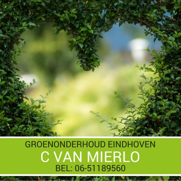 Groenonderhoud Eindhoven